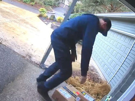 Porch Pirate Gets Caught, and Stumbles Through an Obvious Lie