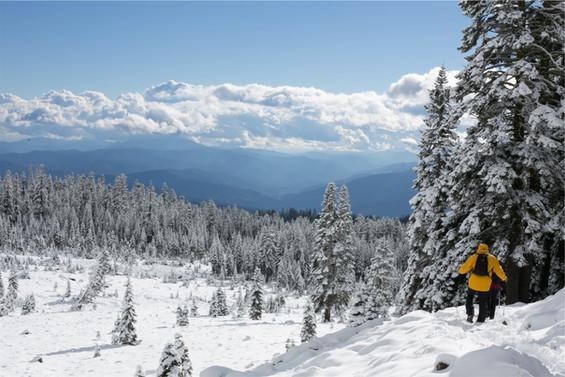oder genießen sie eine Rundwanderung durch den verschneiten Schwarzwald