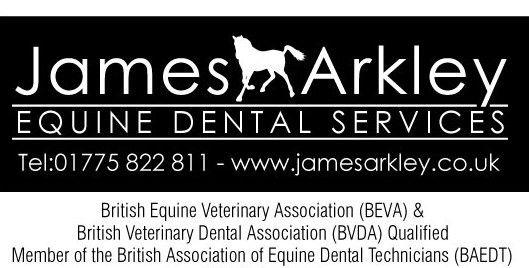James-Arkley BEVA exam sub logo.jpg