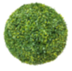 Topiary Head Large