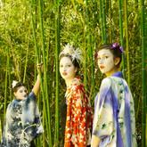 photoshoot kimono 3.jpg