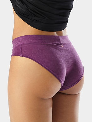womens brief rear.jpg