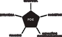 organograma pce.png