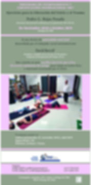 Afiche Amapola Seminario 2019