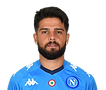 Insigne_edited.png