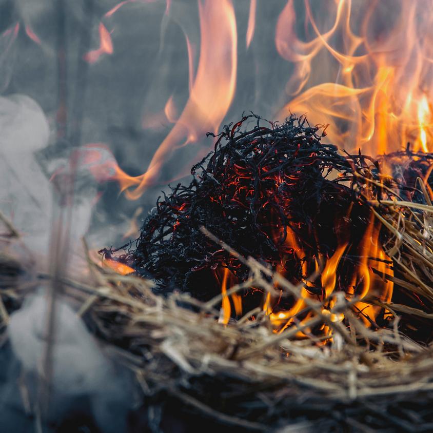 North Burnett Ag Network Event - Cultural Burn Techniques