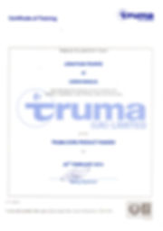 Caravanalia Mobile Truma Servicing and Repair