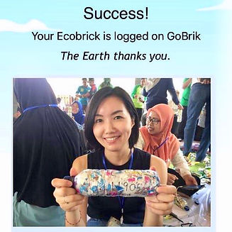 ecobricks yoshiko - ap .jpg
