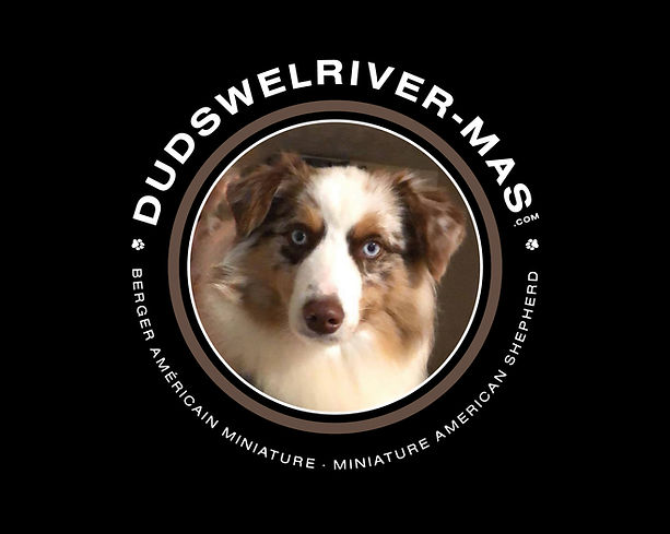 Logo-Final-Dudswelriver-Mas-3.jpg
