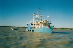 F.V. Nickol Bay