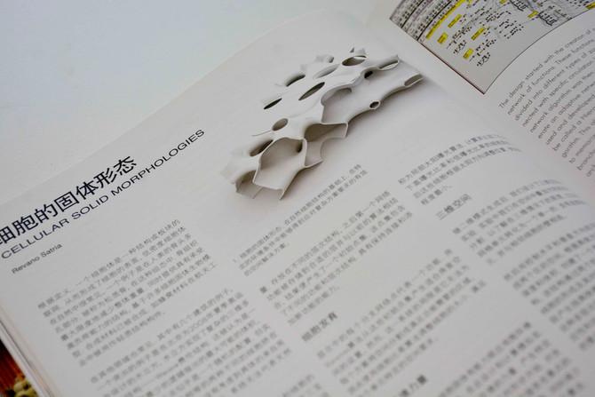 Revano Satria Published in Urban Flux