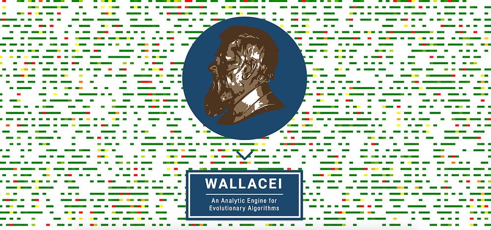 wallacei website launch
