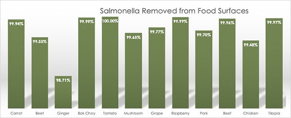 Salmonella killed by MicroNature.jpg