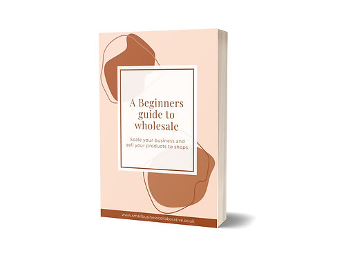 A Beginners Guide to Wholesale Ebook