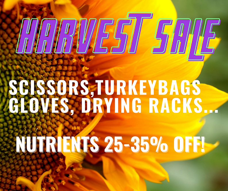 Harvest Sale 2021.png