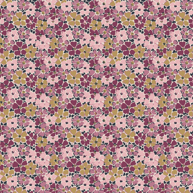 Primula Posey LF04775735A.jpg