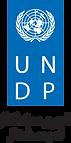 UNDP logo@300x.png