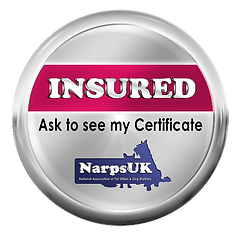 NarpsUK_-_INSURED_Emblem_edited_edited.p
