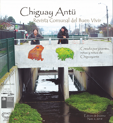 Revista ChiguaAntü. Núm. 2