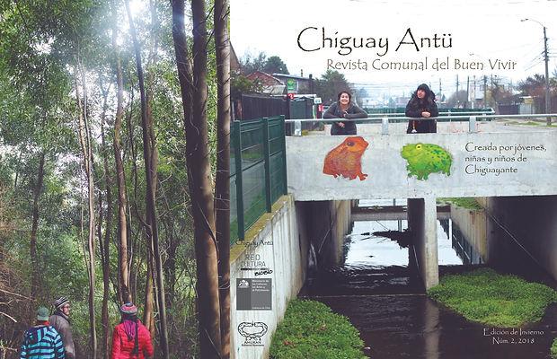 Revista niñes y jóvenes Chiguayante
