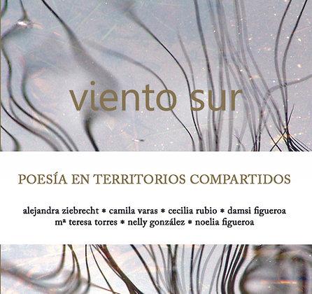Viento Sur. Poesía en territorios compartidos.