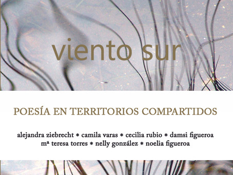 """""""Rutas y encuentros en territorios del Viento Sur"""", por María Teresa Aedo."""