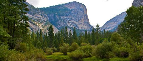 Yosemiti