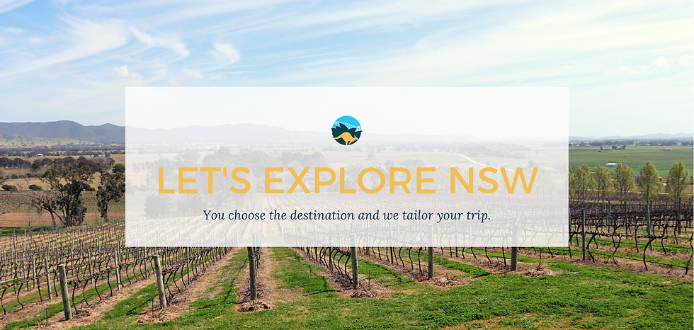 lets explore nsw tours by lloyd.png