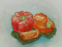 watercolor bell pepper study.jpg