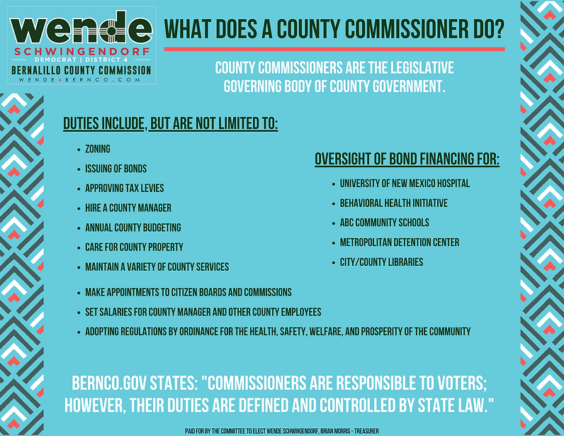 What does a commissioner do_ (3).png