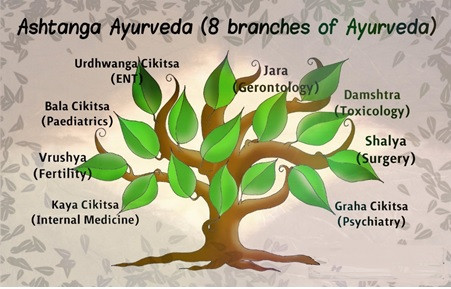 Ayurveda – The Science of Life