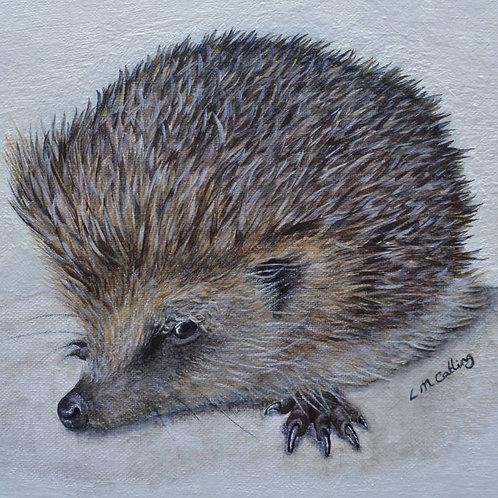 """""""Lauren the Hedgehog"""" - A4 Hedgehog Print - Lauren Catling Artwork"""