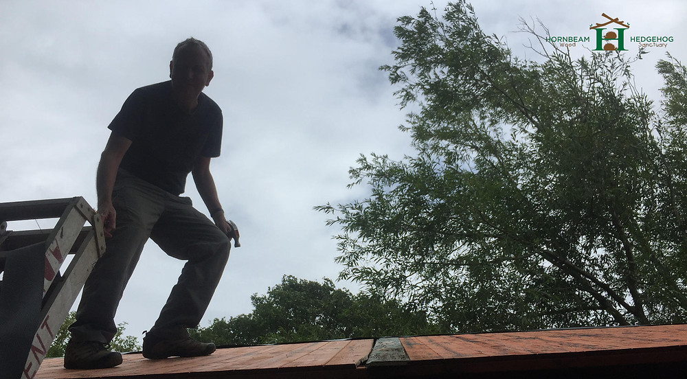 Mike on the roof!