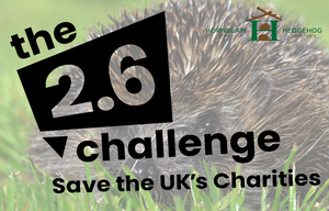 help fundraise for us this Sunday with the #TwoPointSixChallenge and do your bit to help save the UK's charities