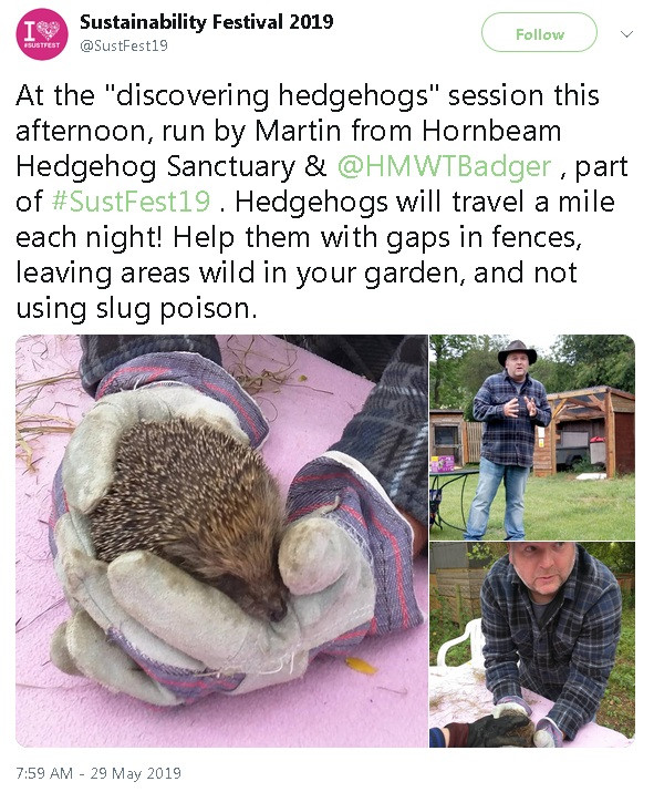 Hornbeam Wood Hedgehog Sanctuary - 'Discover Hedgehogs' - Sustainability Festival 2019 @SustFest19 #SustFest19