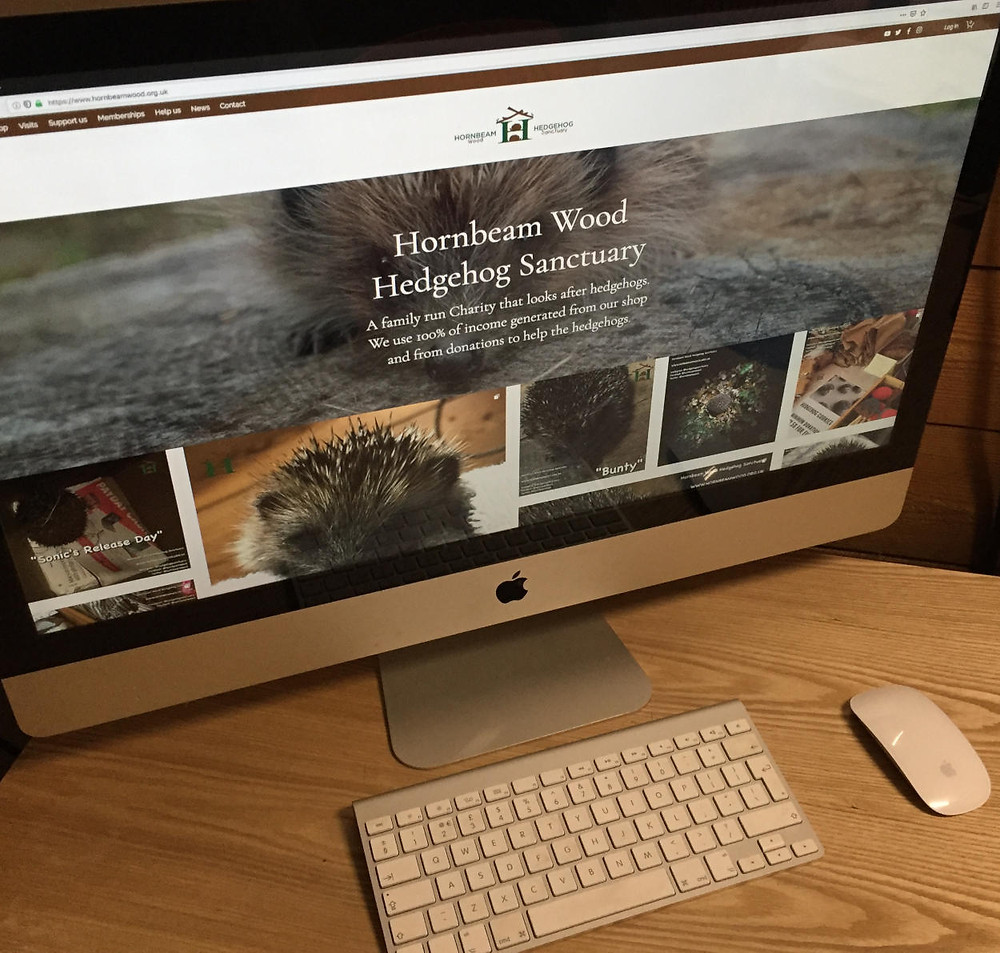 second hand Apple Mac desktop for Hornbeam Wood Hedgehog Sanctuary