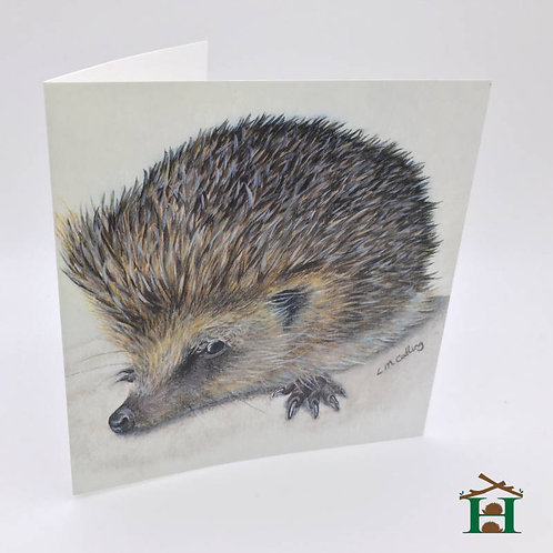 "Picture of ""Lauren the Hedgehog"" - Gift Card Prints x 8"