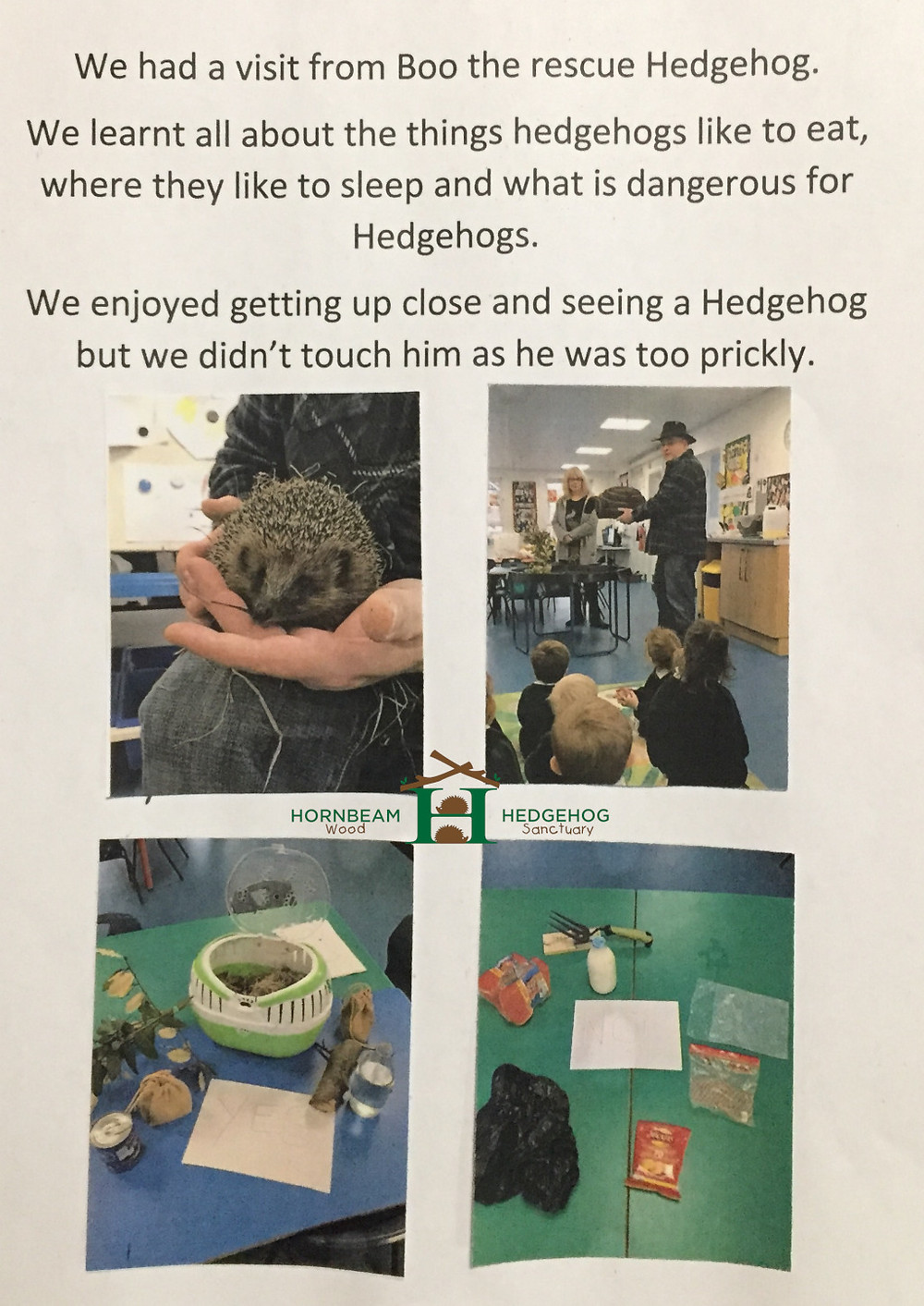 Childrens letter to Hornbeam Wood Hedgehog Sanctuary