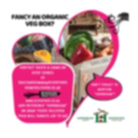 Riverford Organic Farmers HWHS Donation