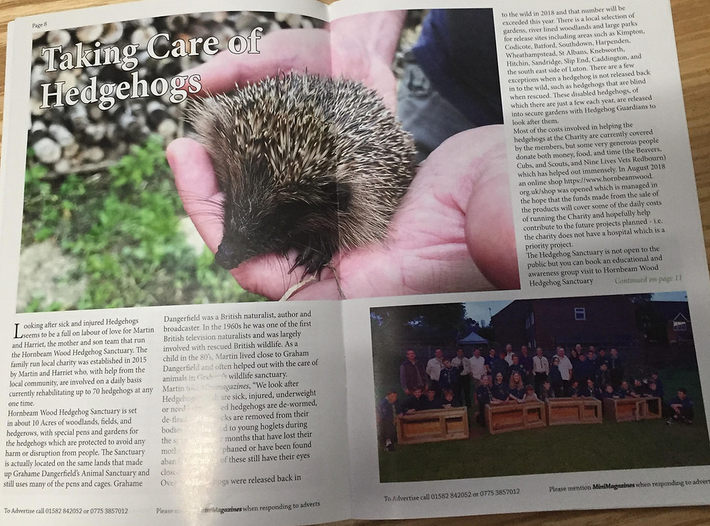 Wheathampstead Magazine Article