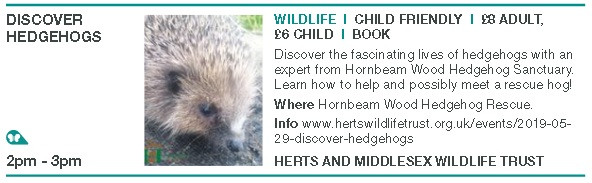 'Discover Hedgehogs'