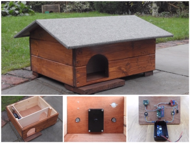 Custom Hedgehog House with built in camera triggers and motion detection!