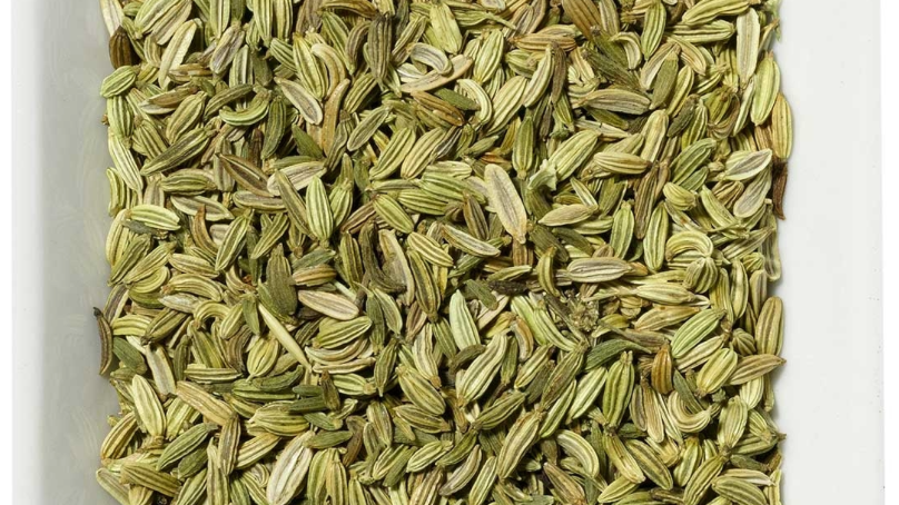 Fennel - Organic Herbal Tea