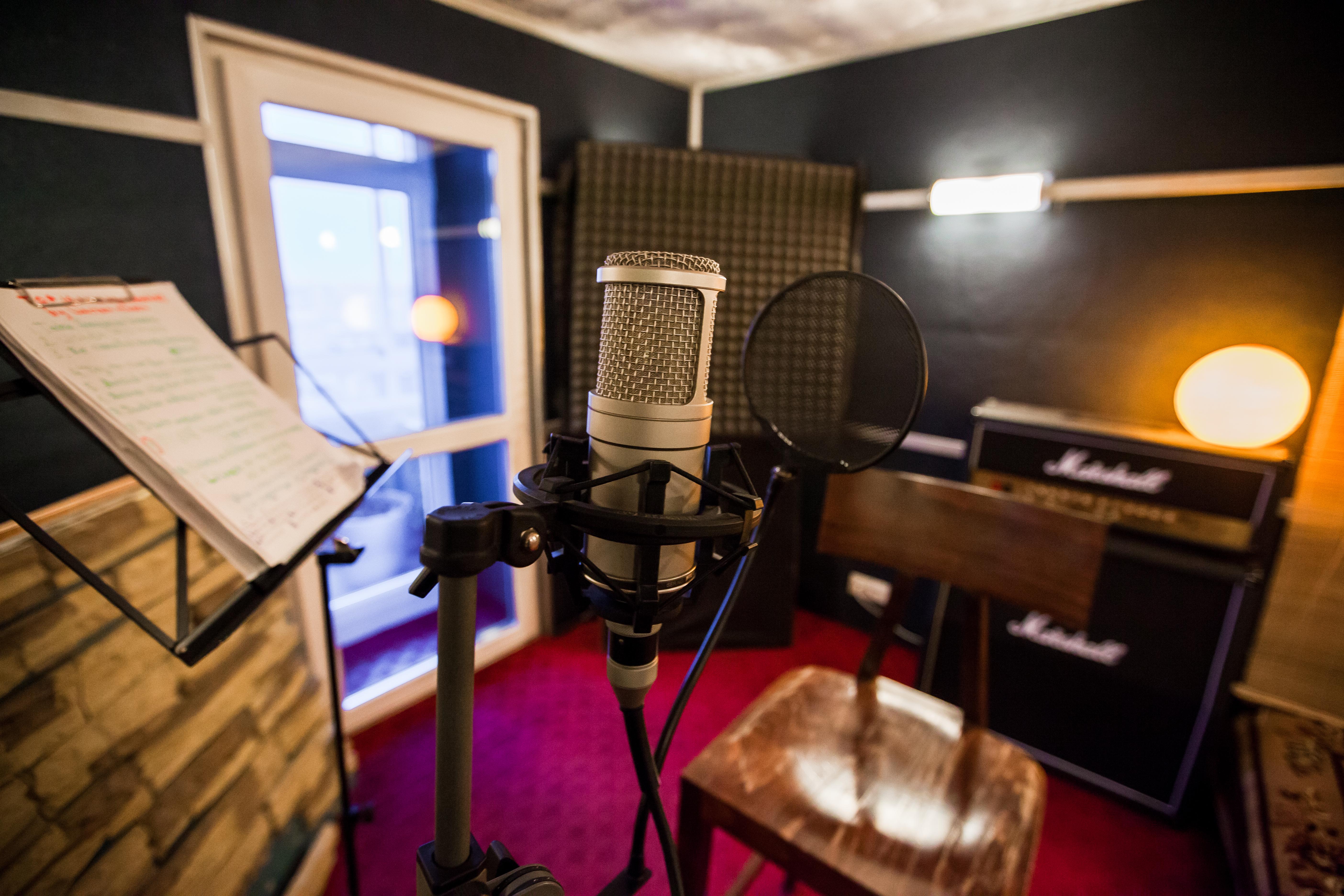 Студийный ламповый микрофон