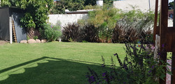 jardín (4)