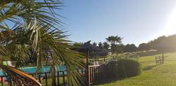 exterior piscina 3