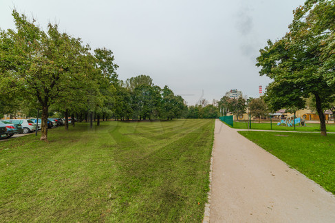 udovit-zelen-okoli.jpg