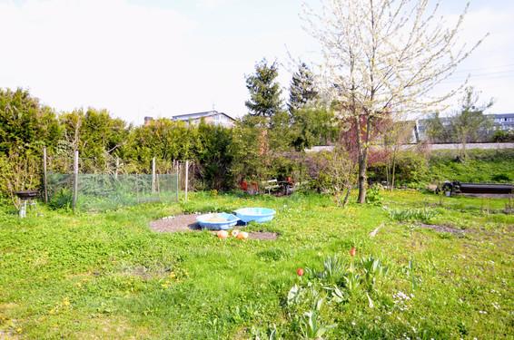 Vrt pred hišo