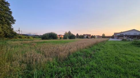okolica.jpg