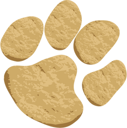Cookie Paw